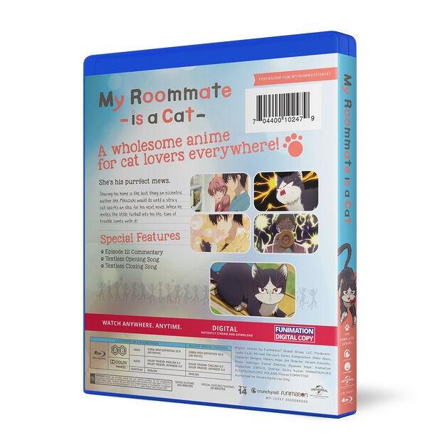The Complete Series - Essentials - BD+Fun Digital
